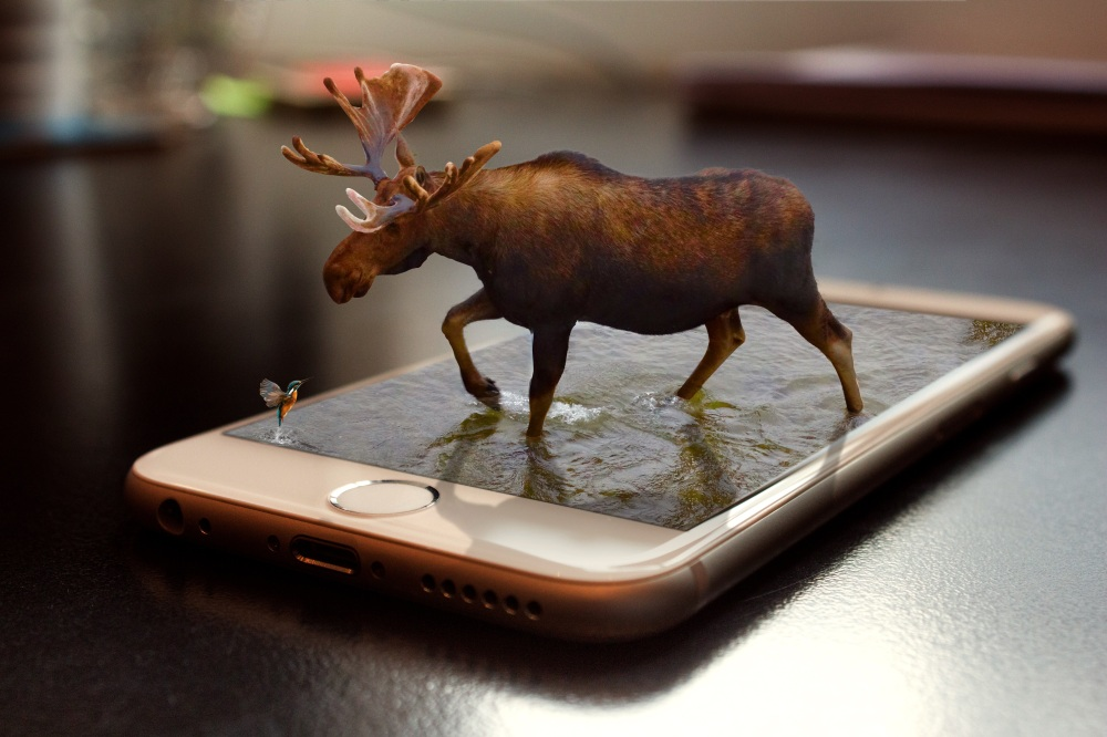 Phone Moose