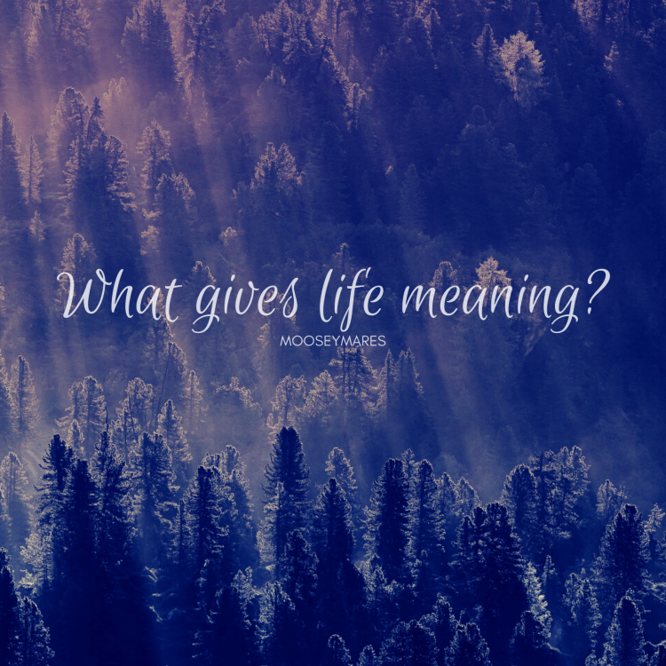 What Gives Life Meaning | Thoughts and Inspiration on Mooseymares
