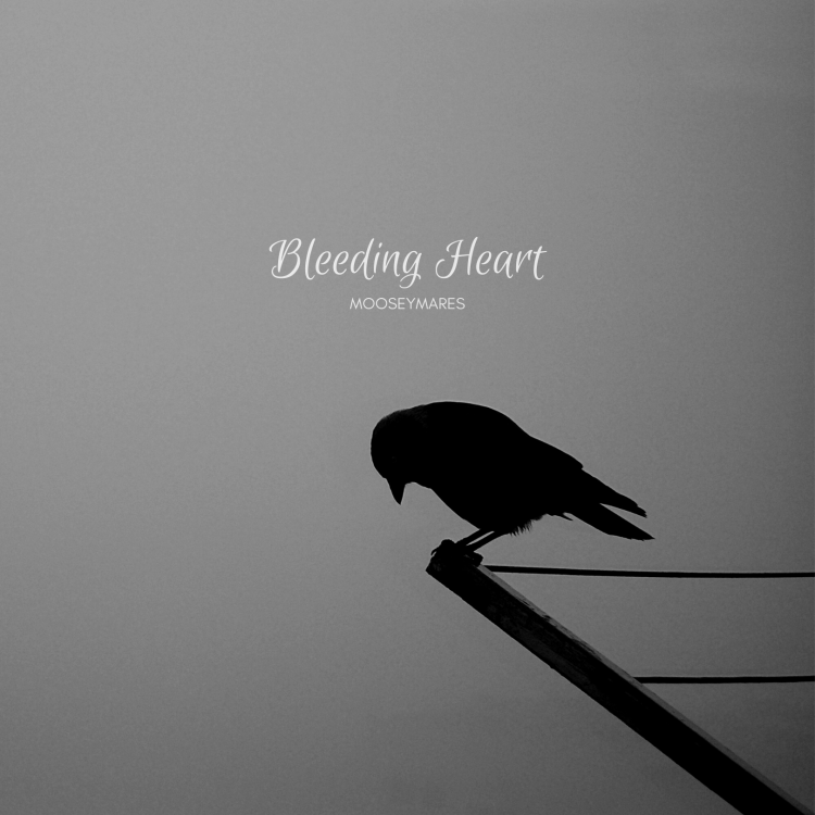 Bleeding Heart | Poetry on Mooseymares