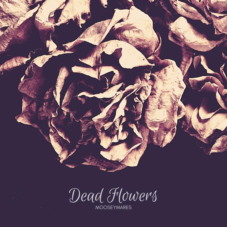 Dead Flowers | Poetry on Mooseymares
